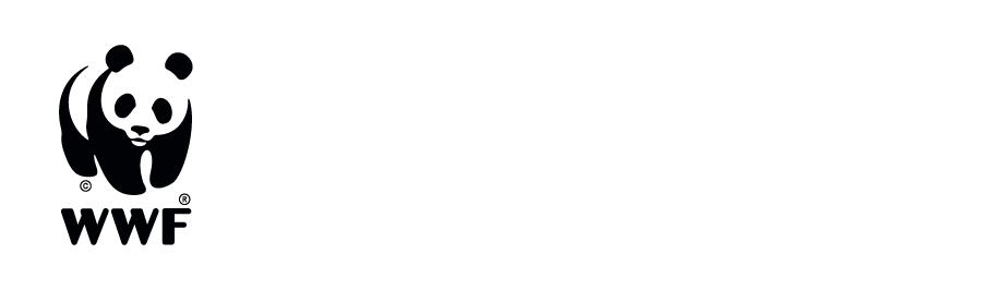 Bienvenidos a Huellas de Extinción